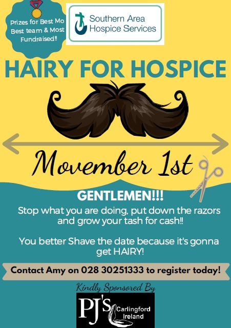We've got a challenge for you!  Could you get Hairy for Hospice?
