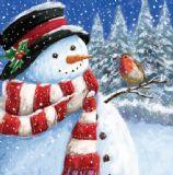 Robin Meets the snowman